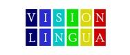Vision Lingua