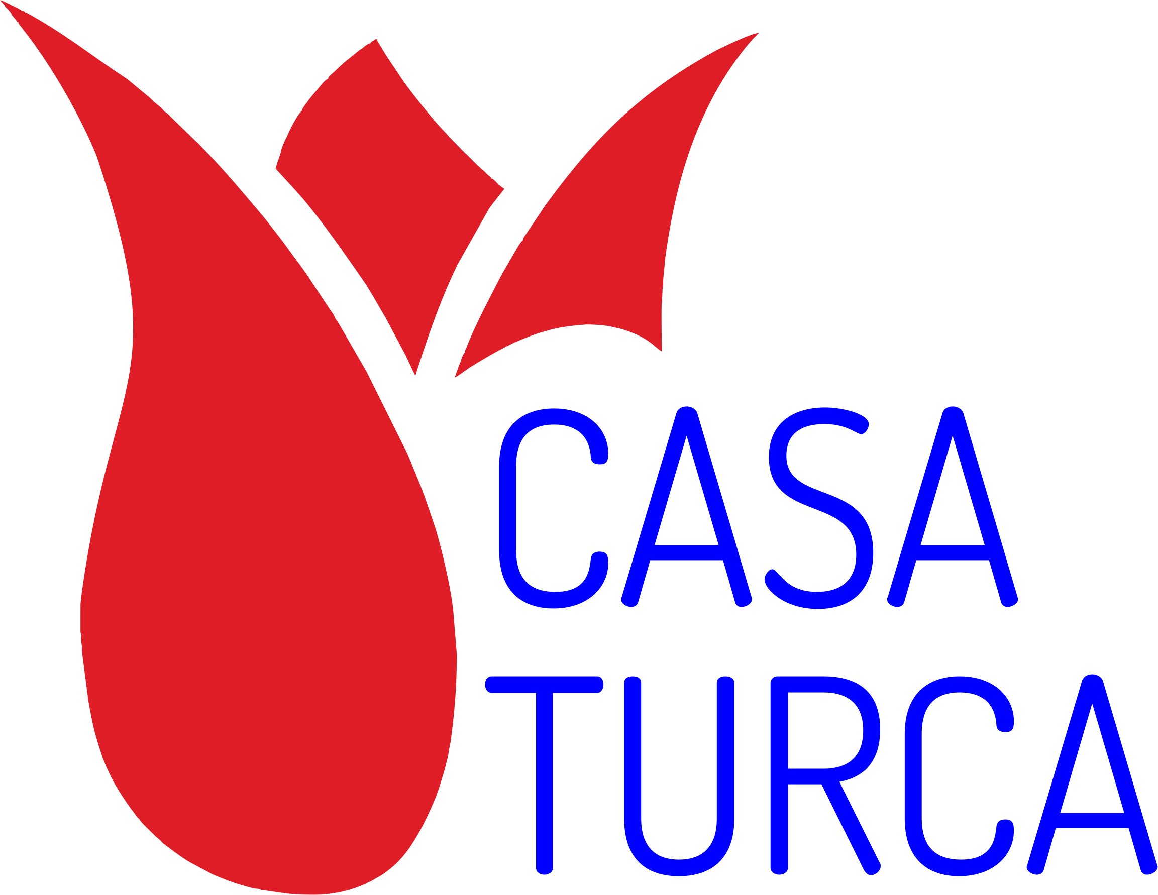 Casa Turca